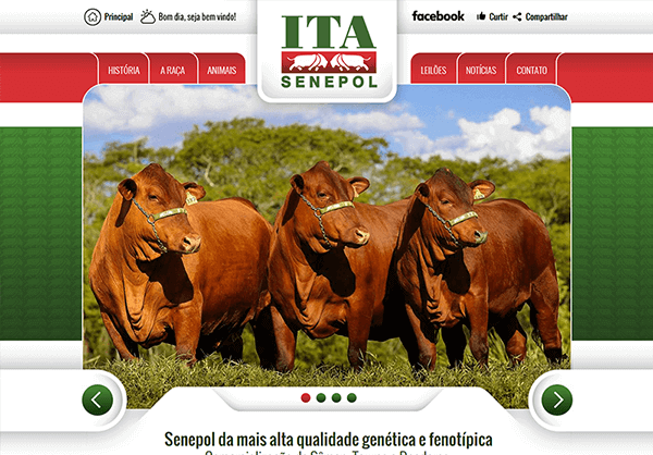 Website Ita Senepol