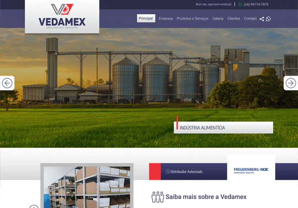 Website Vedamex
